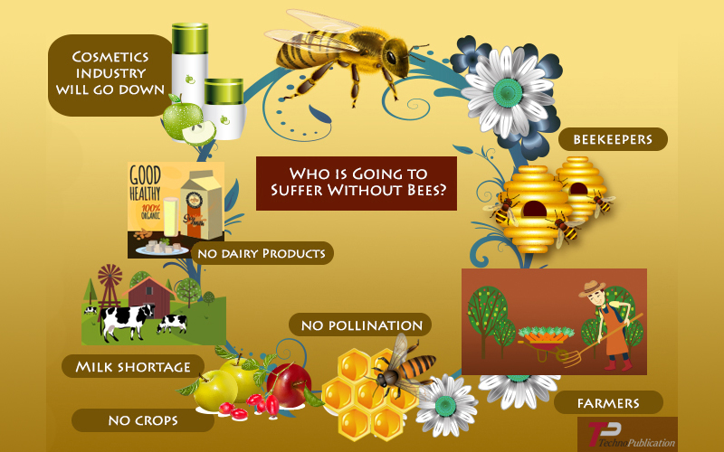 Bees Importance