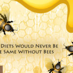 Our Diets Would Never Be the Same Without Bees